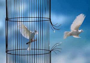 آزادی