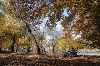 پاییز ییلاقات در مشهد