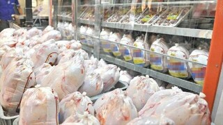 توزیع مرغ گرم