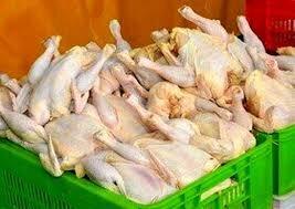 رئیس هیاتمدیره انجمن صنفی مرغداران گوشتی خراسان رضوی