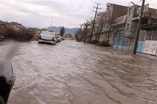 رییس شورای اسلامی شهرستان گناباد