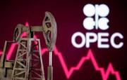 پیش بینی اوپک درباره افزایش تقاضای نفت