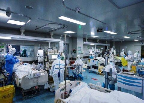 معاون شبکه بهداشت و درمان سرپلذهاب