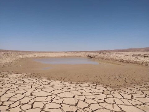 معاون آبخیزداری اداره کل منابع طبیعی و آبخیزداری استان مرکزی